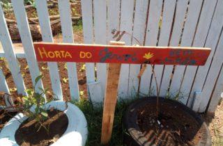 13 de setembro. horta comunitaria 3