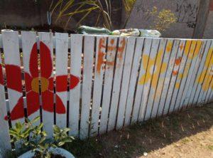 13 de setembro. horta comunitaria 4