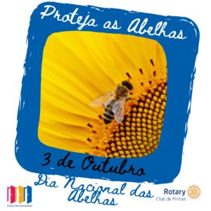 3 de outubro. dia nacional das abelhas